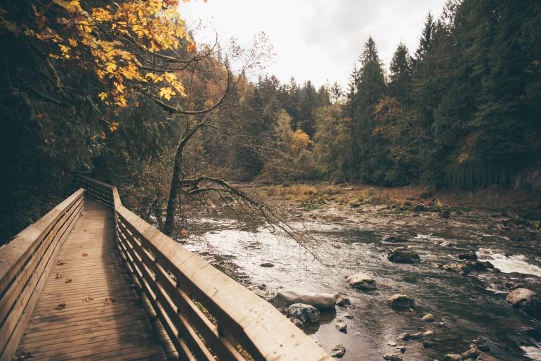 Fall At Restoration City.jpg